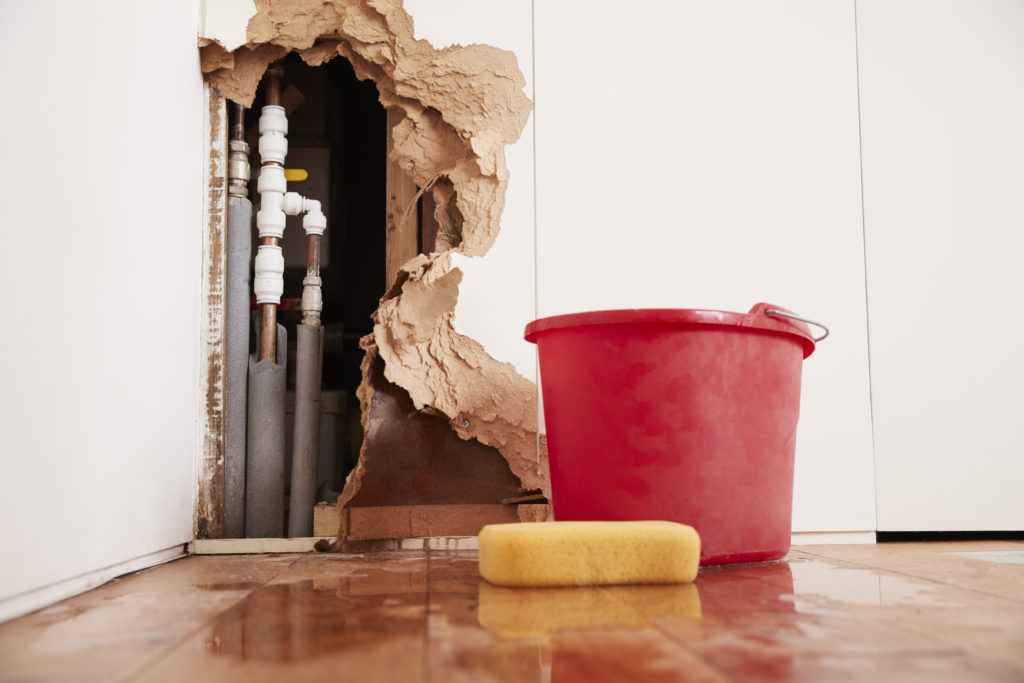Ten Tips to Stop Mold Damage after a Flood